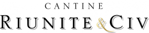 Riunite_logo